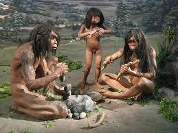 homo erectus 3